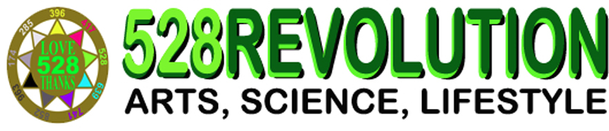 528Revolution_banner_Arts