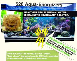 aqua energizer banner