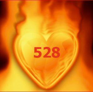 heart528