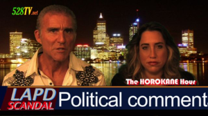 Political Comment by sherri kane and leonard horowitz