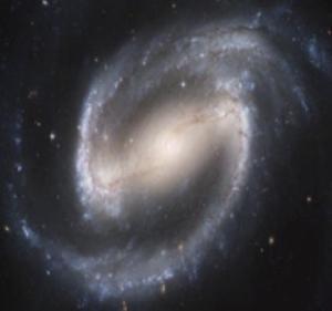 cosmos69