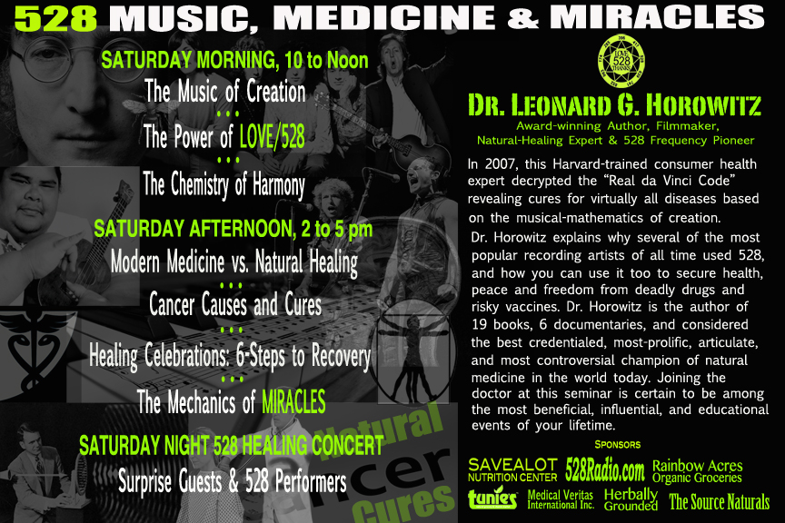528 MUSIC SEMINAR FLIER-HERBALLY GROUNDED 5-20-17_BACK 12x8